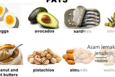 Asam lemak jenuh adalah