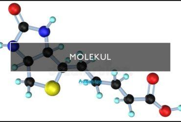 Molekul adalah -- jenis, contoh, rumus, geometri