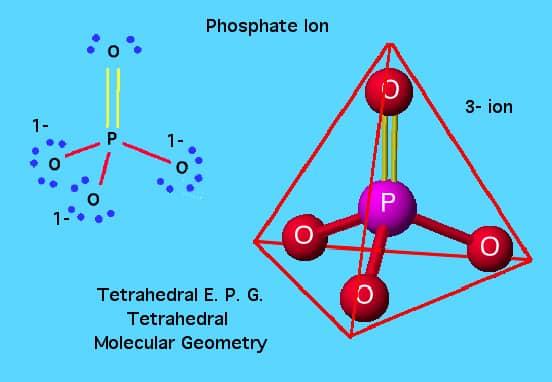 Struktur Ion Fosfat