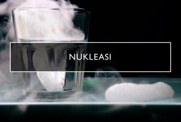 Nukleasi: Pengertian, ciri, jenis, contoh